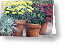 Pots In Bloom Greeting Card