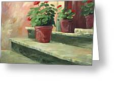 Potted Geraniums Greeting Card