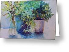 Potted Plant Study Greeting Card
