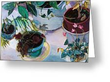 Potted Plants Greeting Card by Diane Ursin
