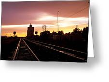 Potter Tracks Greeting Card