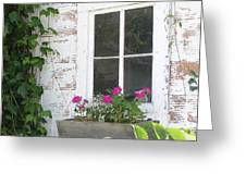 Potting Shed Window Greeting Card