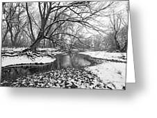 Poudre Black And White Greeting Card by James Steele