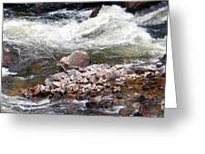 Poudre River 5 Greeting Card