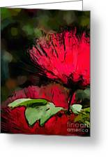 Powder Puff In Red Greeting Card