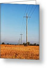 Power Lines At Sunrise Greeting Card
