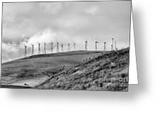 Power Wind Turbines  Bw Greeting Card