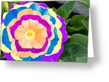Powerflower Greeting Card