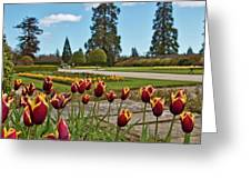 Powerscourt Estate 9 Greeting Card