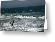 pr 120 - Windsurfer Greeting Card