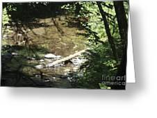 pr 134 - Babbling Brook Greeting Card