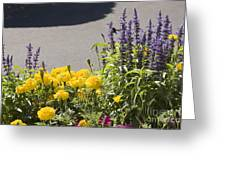 pr 141 - Flower Bed Greeting Card