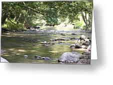 pr 164 - Mountain River Greeting Card