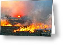 Prairie Burn Sunset In Kansas Greeting Card