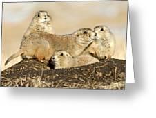 Prairie Dog Family Portrait Greeting Card