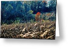 Prairie Edge Greeting Card