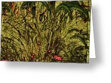 Prairie Grass Greeting Card