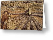 Prairie Harvest Greeting Card