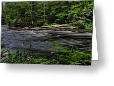 Prairie River Log Jam Greeting Card