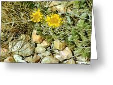 Prairie Rock Garden Greeting Card