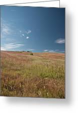 Prairie Sky Greeting Card