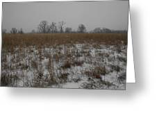 Prairie Snow Greeting Card
