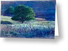 Prairie Trees Impressionistic Grunge Greeting Card