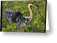 Prancing Heron Greeting Card