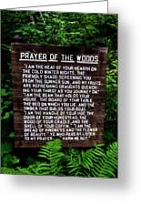 Prayer Of The Woods Greeting Card