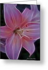 Precious Pink Lily Greeting Card