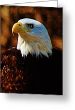 Preexisting Freedom Greeting Card