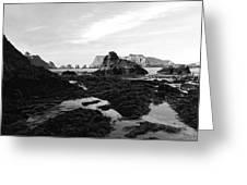 Prehistoric Land Greeting Card