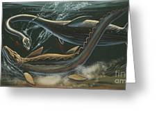 Prehistoric Marine Animals, Underwater View Greeting Card
