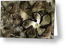 Pressed Flower Greeting Card