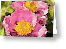 Pretty And Pink Greeting Card