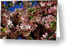 Pretty Blossoms Greeting Card