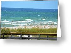 Pretty Blue Gulf Greeting Card