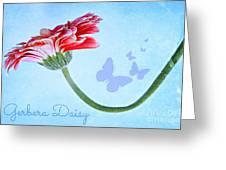 Pretty Greeting Card