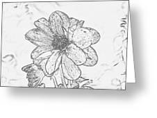 Pretty Flower Greeting Card