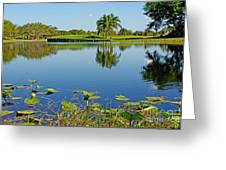 Tranquil Lake In Florida Greeting Card