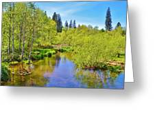 Pretty Lake In The Sierras  Greeting Card