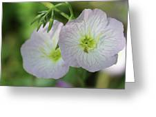 Pretty Little Flowers Greeting Card
