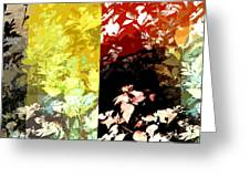 Pretty Maids All In A Row Greeting Card