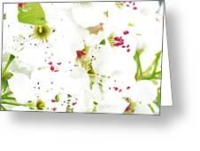 Pretty Pear Petals Greeting Card