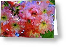 Pretty Petals Greeting Card