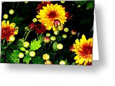 Pretty Petals Greeting Card