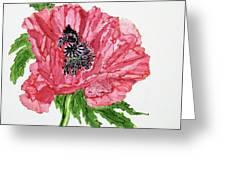 Pretty Poppy Greeting Card