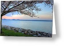 Pretty Potomac Greeting Card