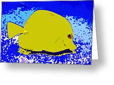 Pretty Yellow Fish Greeting Card