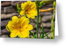 Pretty Yellow Greeting Card